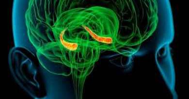 implanty-wkraczaja-do-mozgu